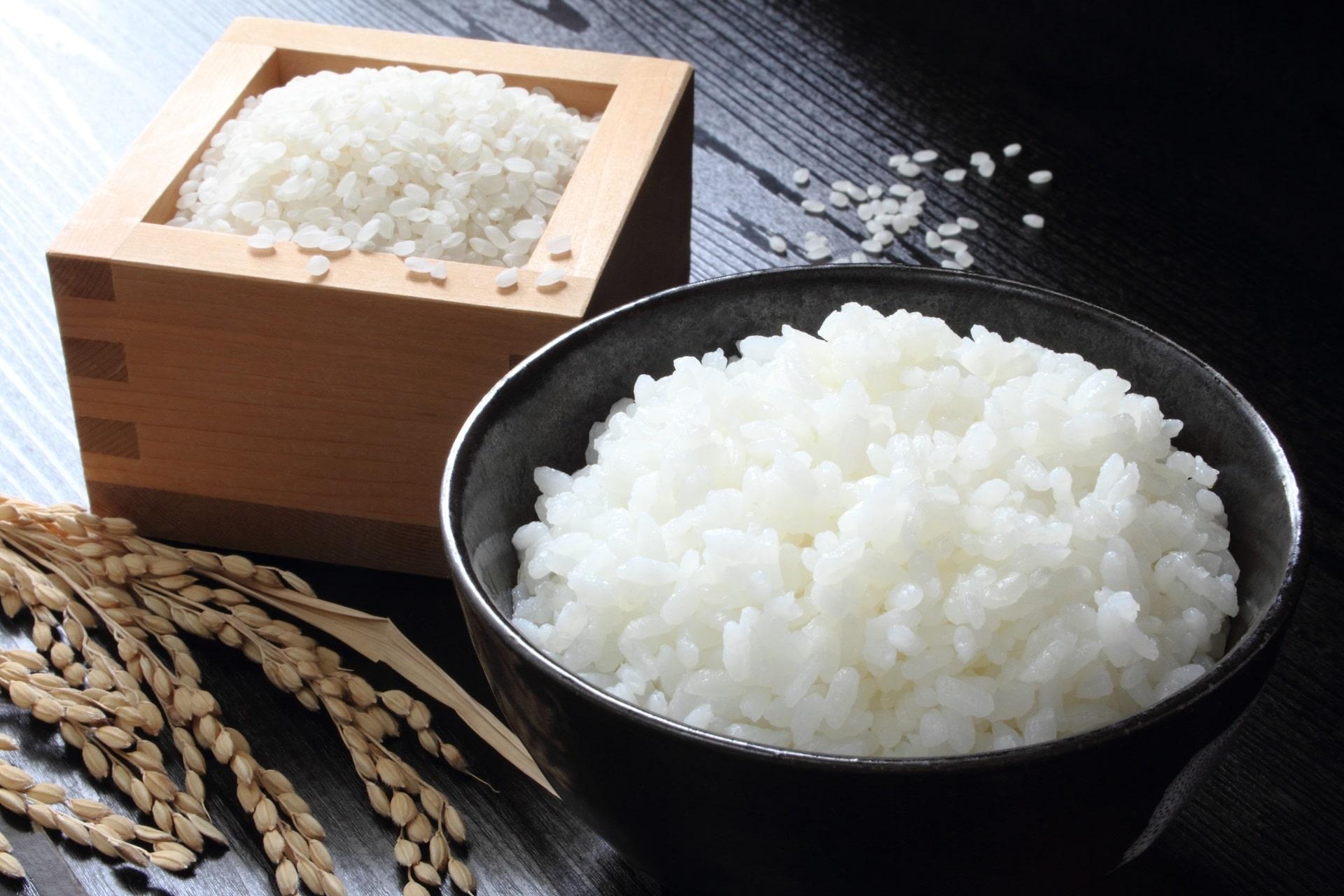 心身に活力を与える!日本人の主食「米」その栄養パワーの謎を解説!