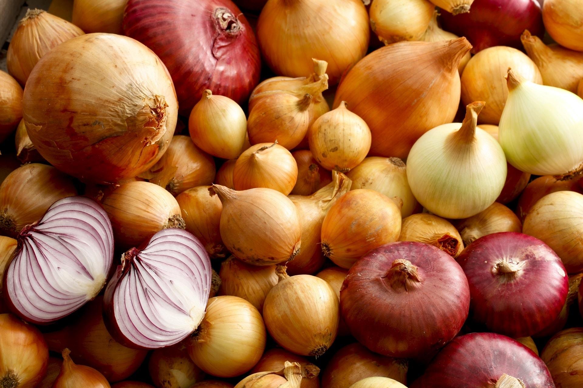 玉ねぎの糖質は?糖質制限中こそ取り入れたい玉ねぎの健康効果とは?